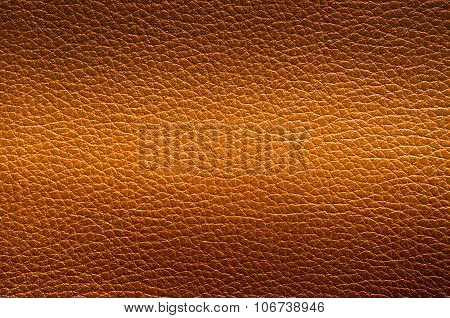 Closeup Of Leather Texture.