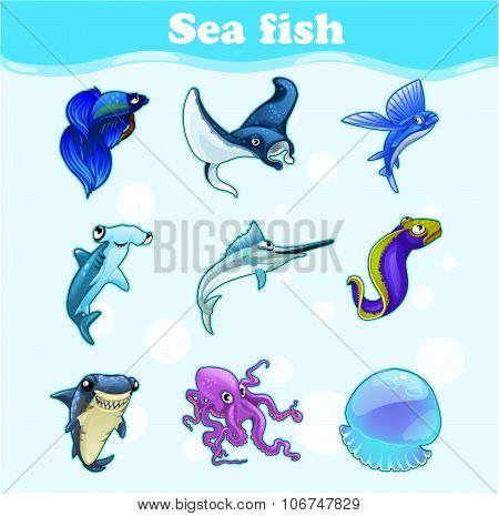 Colorful set of marine animals