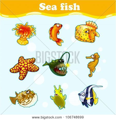 Gold set of marine animals on a blue background