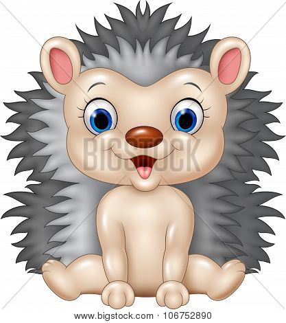 Cute baby hedgehog sitting isolated on transparent background