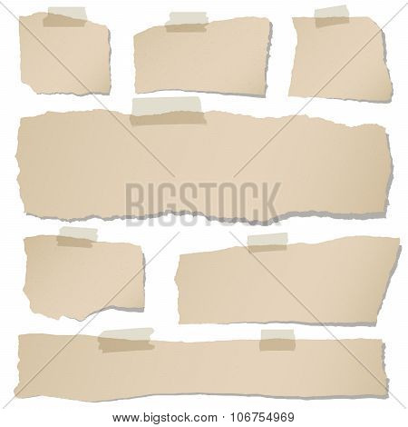 Set of various brown torn note papers with adhesive tape on white background