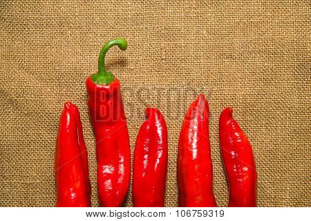 Many Ripe Red  Peppers On The Old Cloth