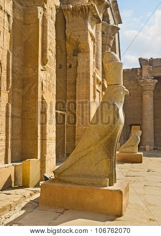 The Birds Of Edfu
