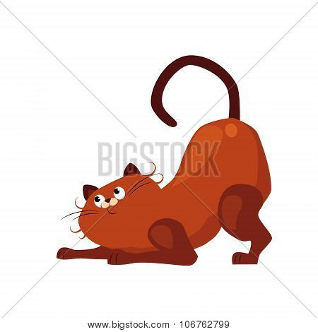 Stretching Cat. Flat Vector Illustration