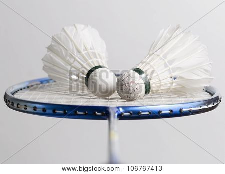 Pair Of Shuttlecocks On Badminton Racket