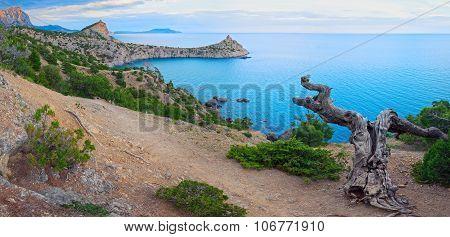 Coastline Of Novyj Svit Reserve (crimea, Ukraine)