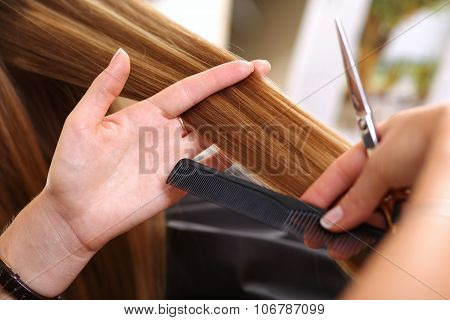 Female Hairdresser Hold In Hand Between Fingers Lock Of Hair