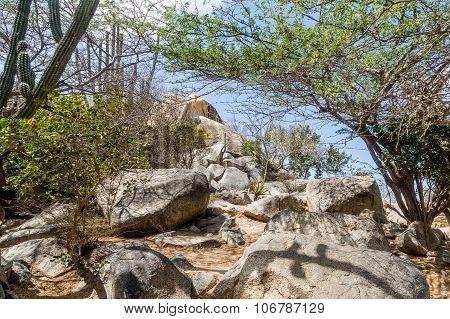 Boulders On Desert Hill