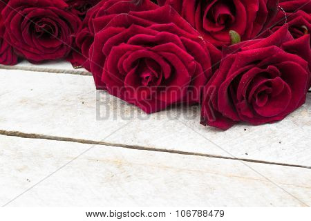 White Wood Background with Roses