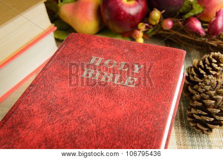 Still Life Red Holy Bible