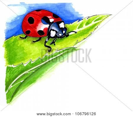 Watercolor illustration of a lady bird on a leaf with copyspace