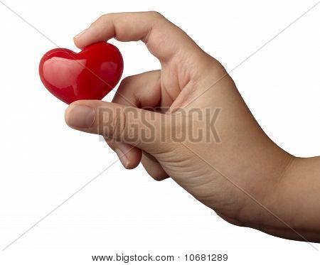Heart Shape Love Romance Hand Holding