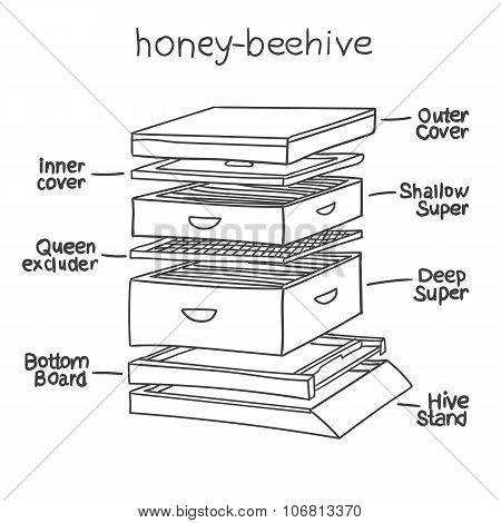Honey-beehive