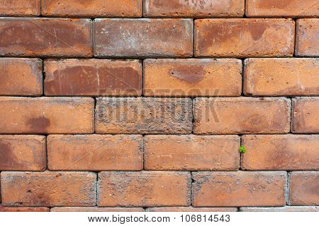Red brown brick texture background.