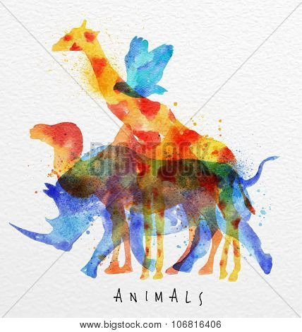 Overprint Animals Rhino