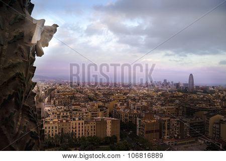 Stone Dove looks over Barcelona