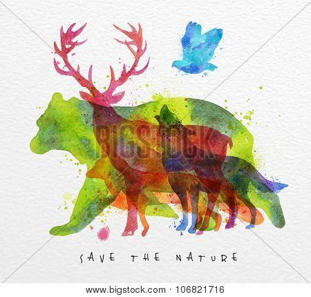 Overprint Animals Bear