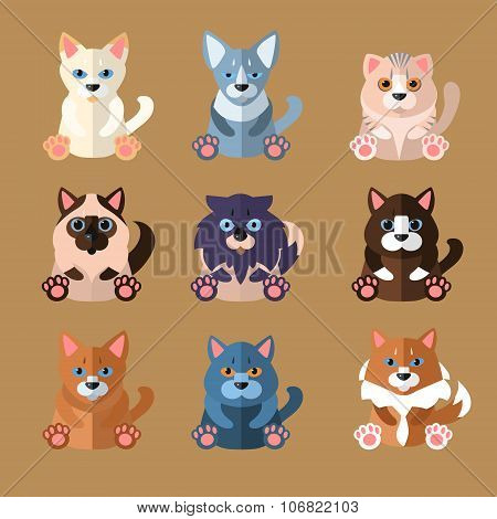 Breeds of Cats Icons. Vector Illustration.