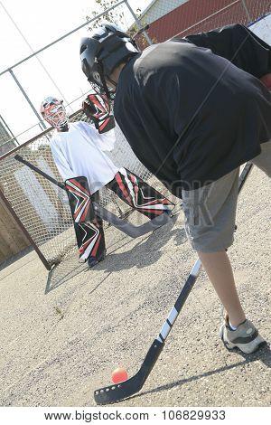 Portrait of hockey ball players play