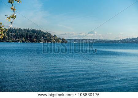 Seward Park - Rainier 2