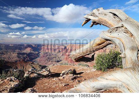 Navajo Point, Grand Canyon