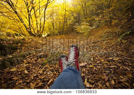 Legs of traveler sitting in autumn forest. Freedom concept