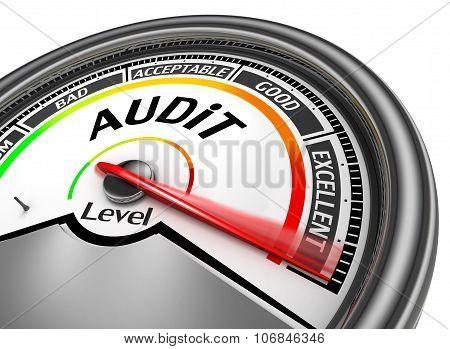 Audit Level To Maximum Conceptual Meter