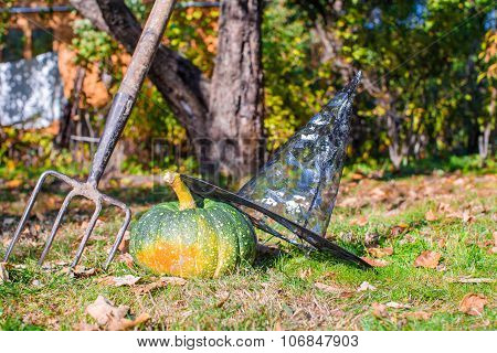 Green Halloween Pumpkins, witches hat and rake outdoors