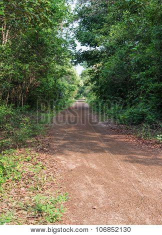 Red Gravel Road