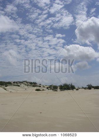 Lamu Beach And Dunes