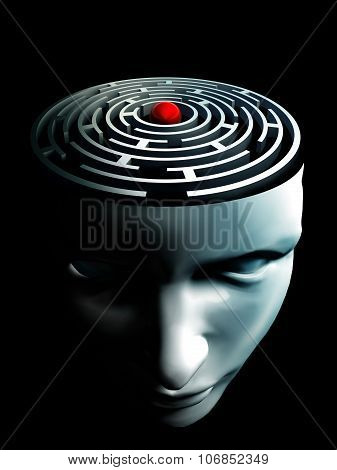 Maze In Human Brain And Red Center