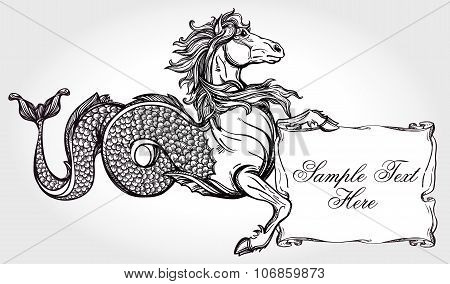 Hippocampus with scroll for your text.