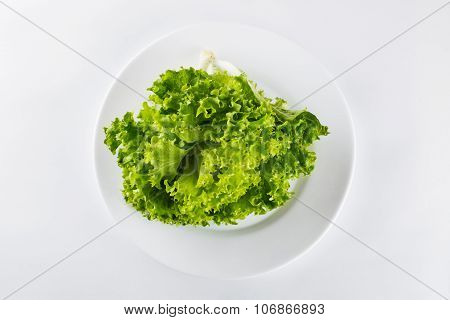 Heathy Lifestyle, Organic Salad In A Plates On White