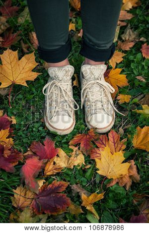 young girl in sneakers stand on grass with red and yellow fallen leaves, autumn concept, shot from above