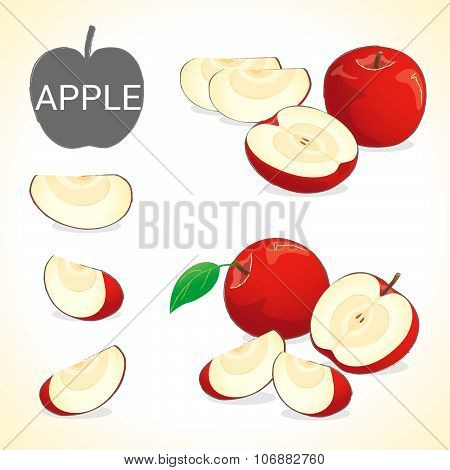 set of apples fruit apple with leave in vector and various styles for your design