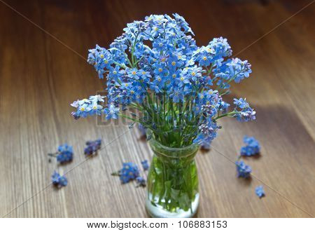 forget me nots in the vase