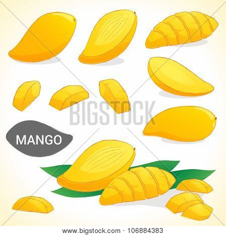 Set of mango in vector and various styles