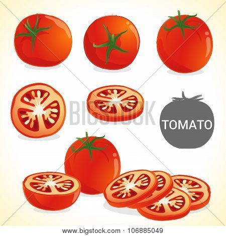 Set of tomato in vector and various style