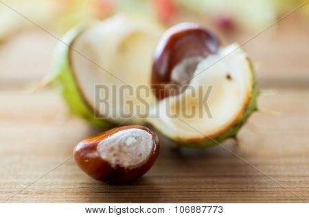 nature, season, autumn and botany concept - close up of chestnut on wooden table