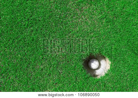 Golf ball in the cup on green golf course