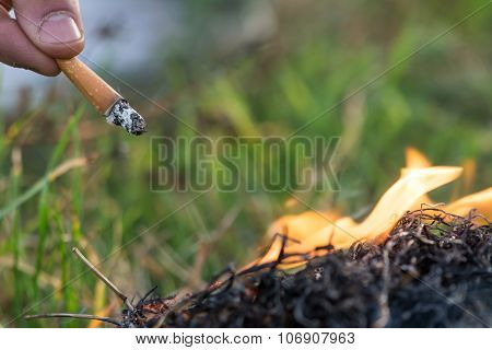 Cigarette Causing A Dangerous Fire On The Forest