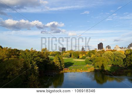 Autumn From The Belvedere Castle