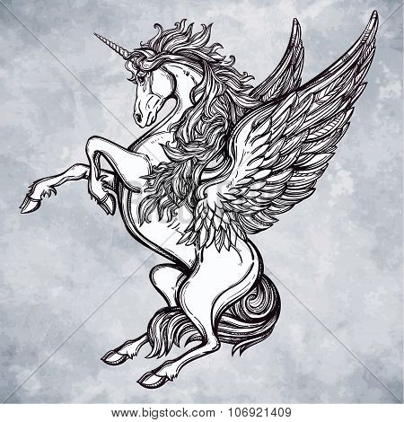 Vintage style Unicorn illustration.