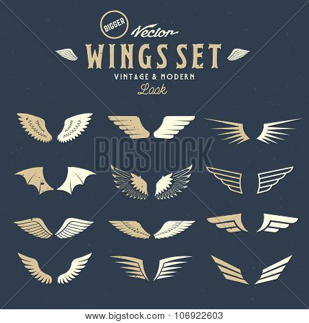 Abstract Vector Wings Big Set, Both Retro and Modern Look. With Shabby Texture