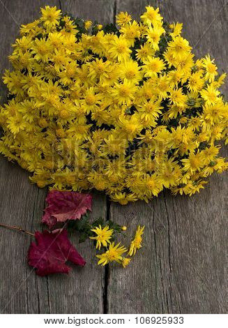 Bouquet Of Beautiful Yellow Flowers And Red Leaf, Still Life