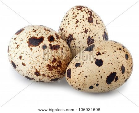 Group Of Quail Eggs Isolate