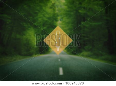 Trees Forest Freedom Greenery Journey Tranquil Concept