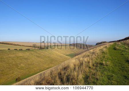 Horsedale Grazing Meadows