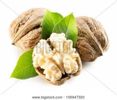 Walnuts With Walnut Nucleus Isolated On The White Background