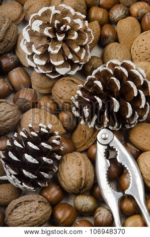 Various Nuts, Pine Cones And A Nutcracker